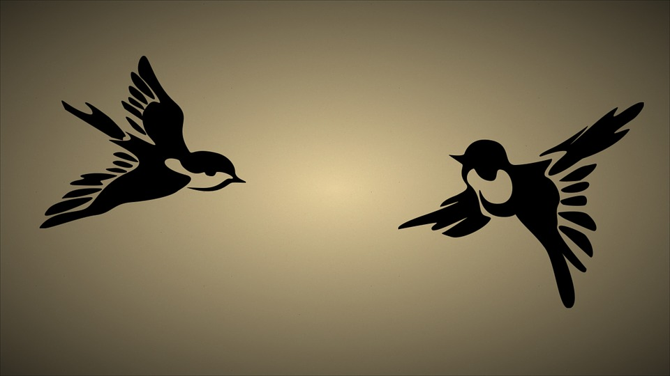 Stylized art of two flying birds